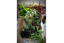 Cultivo vertical con diseño