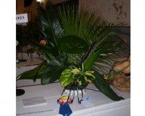 Exposición Floral de otoño - Grupos Sudoeste - Abril, 2015