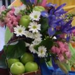 33° Exposición Floral de Primavera Grupos Sudeste