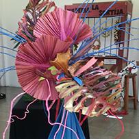14° Exposición Floral de Primavera Zona Noroeste